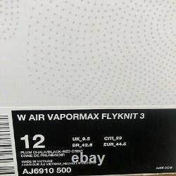 Nike Womens Air Vapormax Flyknit 3 Plum Chalk South Beach AJ6910 500 Size 12