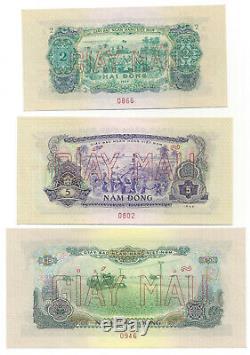 South Vietnam 7-pc Specimen 10 Xu-50 Dong 1966 Unc P 37 38 39 40 41 42 44