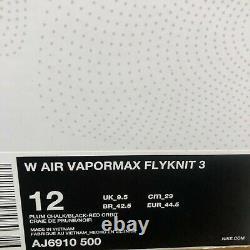 Nike Femmes Air Vapormax Flyknit 3 Plum Chalk South Beach Aj6910 500 Taille 12